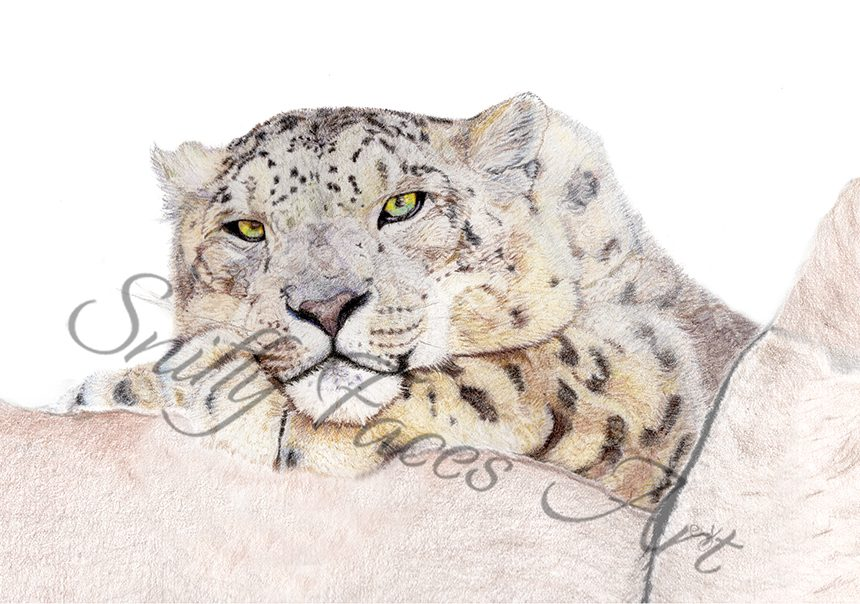 'Snow Leopard' Card