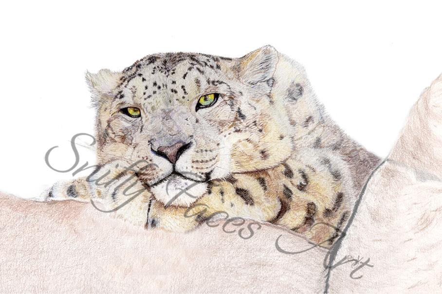 'Snow Leopard' Card