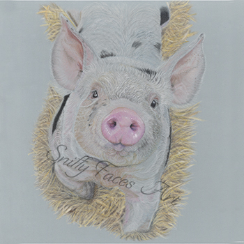 'Wilbur' Original Artwork Sniffy Faces Art Shop