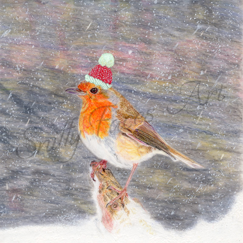 'Robin Red Winter Hat' Card Sniffy Faces Art Shop