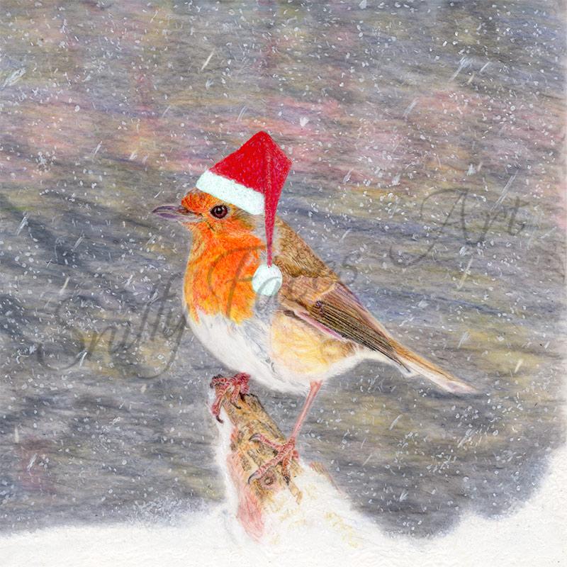 'Robin Santa Hat' Card