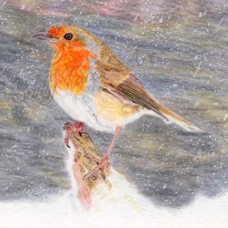 'Winter Robin' Card