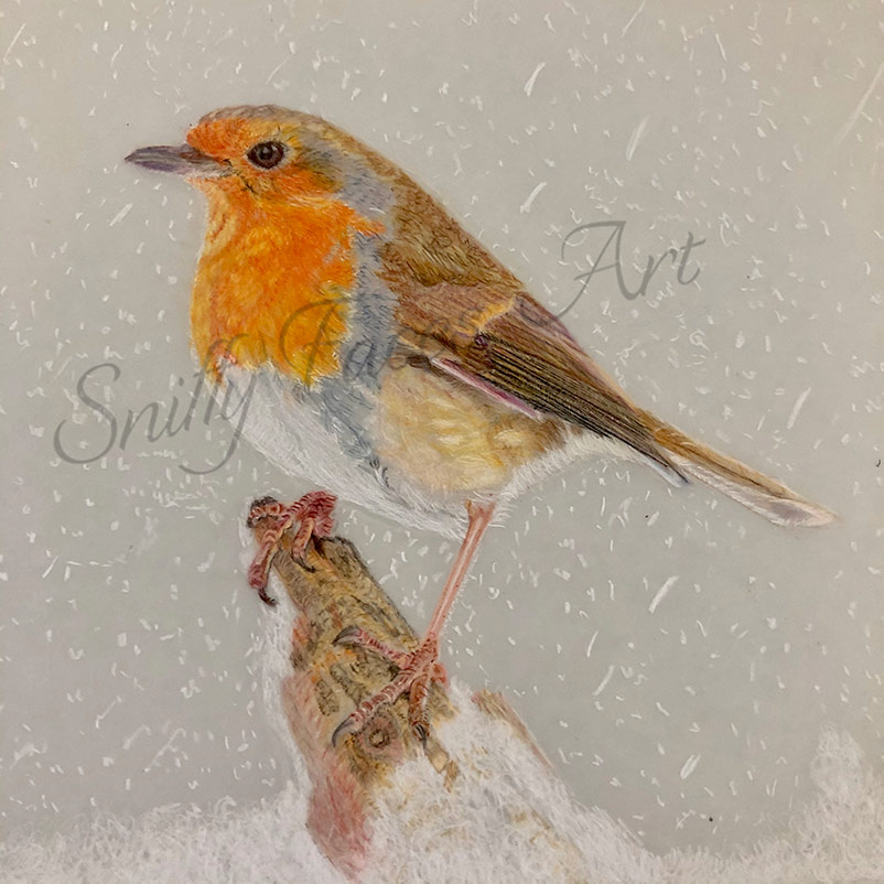 'Winter Robin' Card (Daytime) Sniffy Faces Art Shop