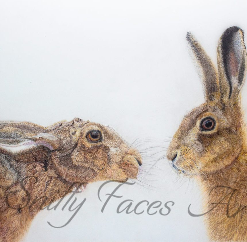 'Kissing hares' Card Sniffy Faces Art Shop